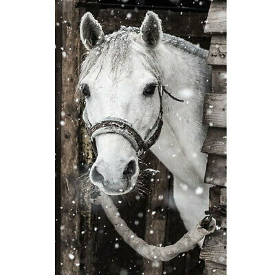 AU14.99 • Buy 5D DIY Full Drill Diamond Painting White Horse Embroidery Kits Home Wall Decor