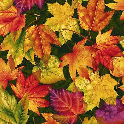 £8.75 • Buy End Of Bolt~~58.5cm X 112cm~~ LEAVES~~AUTUMN ALBUM ~~2017-68 By Henry Glass