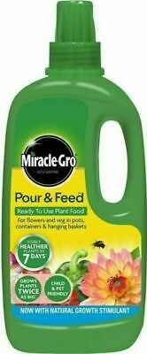 £5.96 • Buy Miracle Gro Pour And Feed Plant Food - 1 L