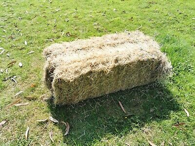 £4.50 • Buy Meadow Hay, Small Bale