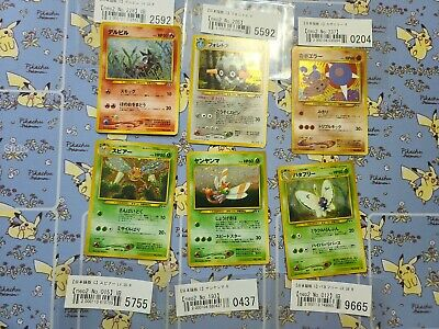 $12 • Buy A: Pokemon Cards   Neo Discovery   Japanese Holo D- C Condition
