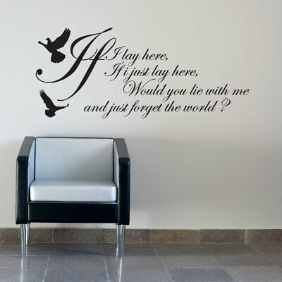 If I LAY HERE...SNOW PATROL WALL STICKER ART DECALS • 8.99£