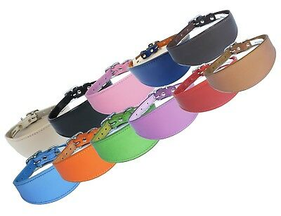 £14.95 • Buy Plain Leather Whippet Collar Padded Suede Lined Greyhound Collars Dog Collars