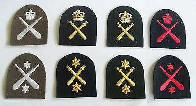 Royal Marines Physical Training Instructor (pti) Tombstone Badges • 7.50£