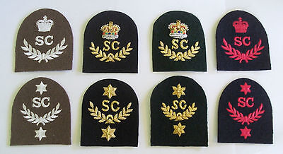 Royal Marines Swimmer Canoeist (sc) Tombstone Badges • 9.95£