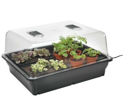 £43.49 • Buy Stewart 52cm Fixed Thermostatic Controlled Electric Propagator
