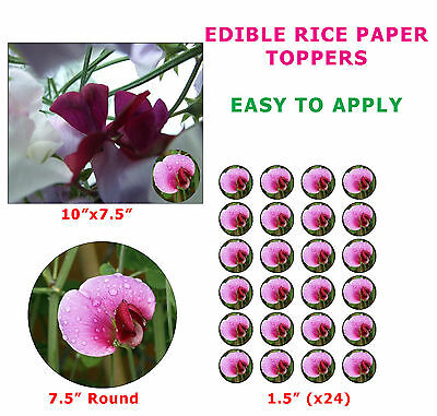 Sweet Pea Flower Cake/Cupcake Topper On Edible Rice Paper - Flowering Plant Idea • 3.50£