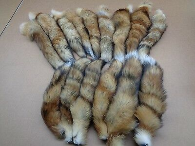 $10.95 • Buy #1 Quality XL Tanned Red Fox Tails/Crafts/Real USA Fur Tails/Harley Parts/Purse