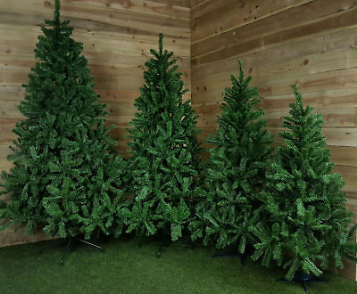 4ft, 5ft, 6ft, 7ft, Or 8ft Colorado Spruce Christmas Tree In Green • 16.25£