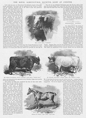 £12.95 • Buy CHESTER The Royal Agricultural Society Show - Antique Print 1893
