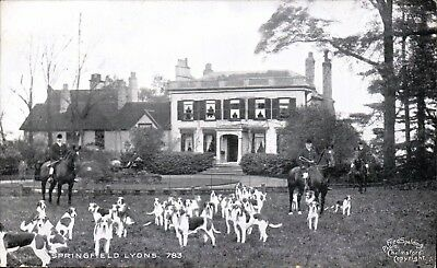 £9 • Buy Springfield Lyons Near Chelmsford # 783 By Fred Spalding. Fox Hounds.