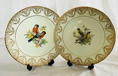 RRP £19.95 BRITISH BIRDS 20CM GILDED EDGE UNBOXED DECORATIVE WALL PLATES