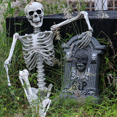 $ CDN40.05 • Buy Halloween Party Decoration Full Life Size Human Skull Skeleton Anatomical Fancy