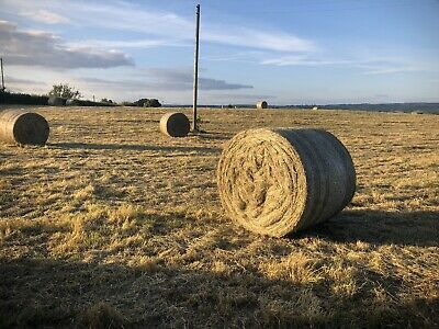 £35 • Buy Large Round Bale Meadow And Rye Grass Hay- Excellent Quality- Horse Hay