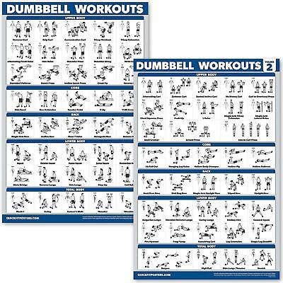 Dumbbell Workout Exercise Posters QuickFit 2 Pack - Volume 1 & 2 Exercise Charts • 18.42£