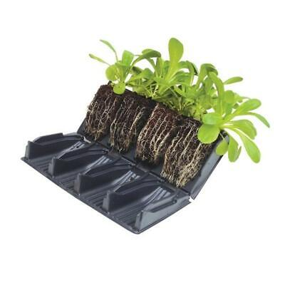 Compact Rootrainers Books Propagator Cells Root Trainers Vegetables Plants 9cm • 9.25£