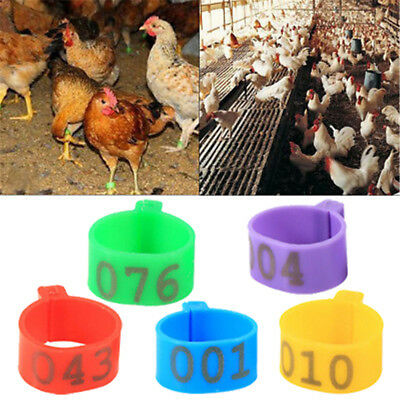 100X 16mm Clip On Leg Band Rings For Chickens Ducks Hens Poultry Large Fowl  Cz • 5.09£