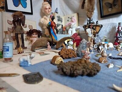 £25 • Buy Box Of Oddities And Collectibles - Fill Your Oddity Shelves With Weird Things