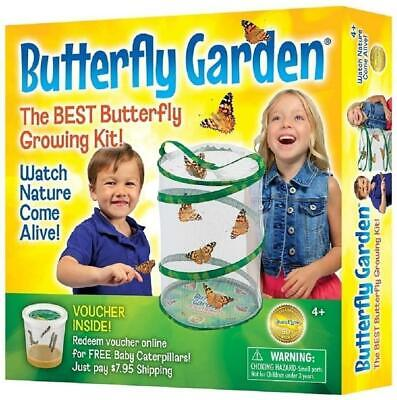 Insect Lore Kids Live Butterfly Garden Hatching Kit- Grows 5 Caterpillars New • 22.80£