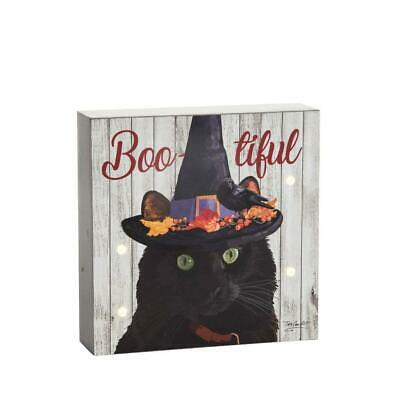 Black Cat In A Witch Hat Halloween Themed LED Lighted Wall Shelf Decoration Box • 16.61£