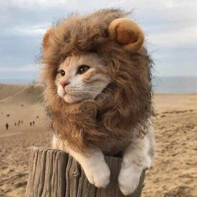 Funny Clothes For Cats Lion Mane Cat Costume Lion Hair Wig Cap Pet Xmas Costumes • 6.49£