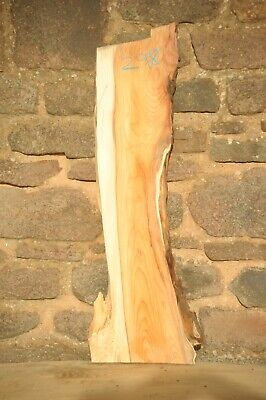 Yew Board 1 Live Edge Dry, Flat & Straight, Planed R298 • 12£