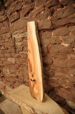 Yew Board Dry, Flat & Straight, Live Edge R556 • 17£