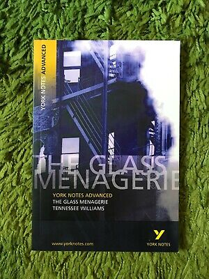 The Glass Menagerie: York Notes Advanced By Rebecca Warren (Paperback, 2003) • 7£