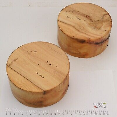 2 English Yew Woodturning Or Wood Carving Bowl Blanks.   155 X 75mm.    6122A • 10£