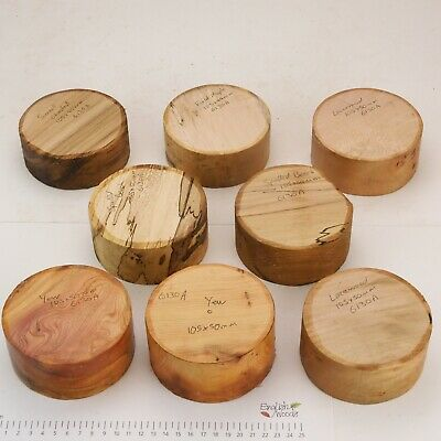 8 English Wood Turning Bowl Blanks. Yew, Spalted Beech.  105 X 40-50mm.  6130A • 9.50£