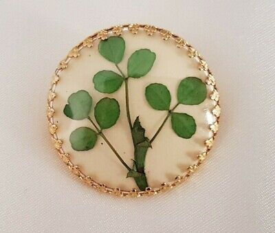 £9.99 • Buy Brooch ~ Shamrock ~ Pressed Lucky Clover ~ Round ~ Gold Tone ~ Vintage