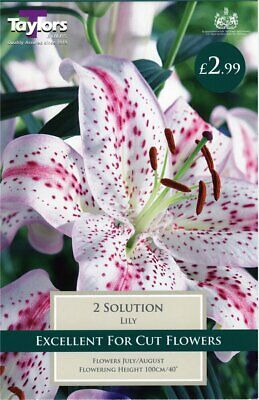 Taylors 2 X Lily Solution Bulbs (1 Packet) • 2.99£