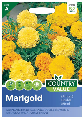 Marigold African Double Mixed (100) Country Value Seeds • 1.25£