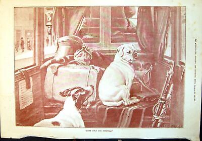 $ CDN42.52 • Buy Old Antique Print Going Away For Christmas Dogs Luggage Golf Clubs 1890 19th