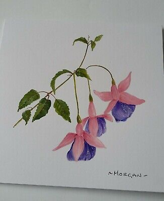 £2.50 • Buy Hand PAINTED WATERCOLOUR OF FUCHSIA GREETINGS CARD
