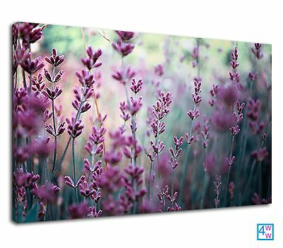 The Beautiful Purple Lavender For Bathroom Canvas Print Wall Art Picture • 38.99£