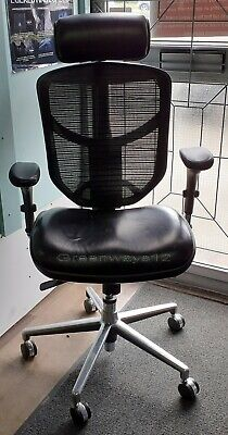 AU427.29 • Buy Enjoy Leather Seat Base Mesh Back Office Chair With Adjustable Leather Headrest