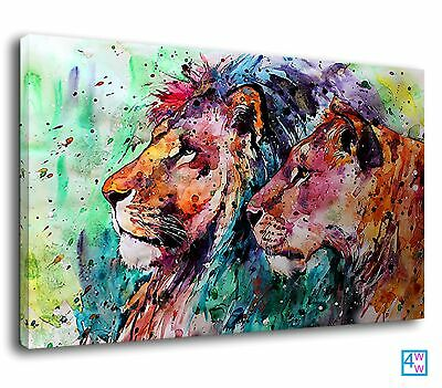 £38.99 • Buy Stunning Male Female Lion Pride Watercolour Africa Canvas Print Wall Art Picture