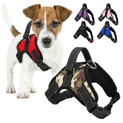 £6.59 • Buy Dog Harness Adjustable Collar Lead  Padded Resistant  Vest Lead Puppy Dog New