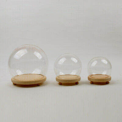 £10.75 • Buy Wooden Base Small/Large Display Glass Cloche Bell Jar Dome Ball Home Decorations