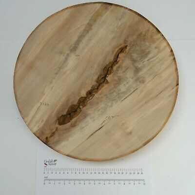 £68.95 • Buy English Crotch Sycamore Woodturning Or Wood Carving Bowl Blank. 405 X 75mm. 4925