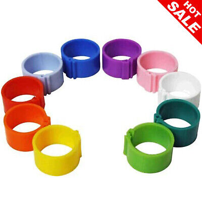 £7.19 • Buy Clip On Leg Rings For Chickens Ducks Hens Poultry Large Fowl Mixed 10 X 16 Mm