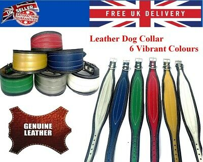 £7.45 • Buy Real Handmade Leather Dog Collar Whippet Greyhound Saluki Lurcher Small To XL