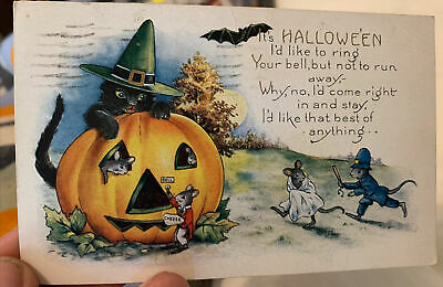 $ CDN3.93 • Buy Halloween Postcard Cat Witch Guarding A Jack-o-lantern House Of Mice 1926