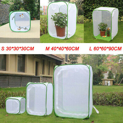 £9.97 • Buy Mesh Insect Cage Butterfly Enclosure Net Plant Breeding Housing Mesh Supplies