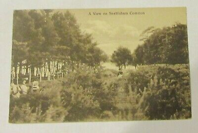 £7.99 • Buy A View On Snettisham Common. No.7693. Old Postcard