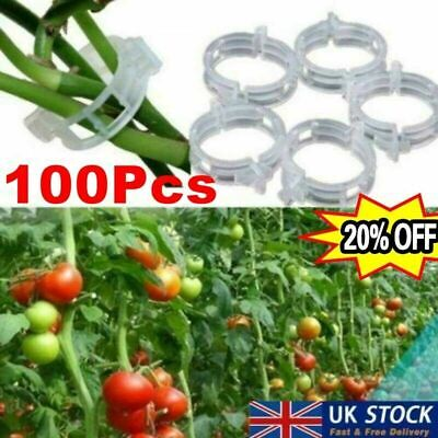 £3.95 • Buy 100x Tomato And Veggie Garden Plant Support Clips For Twine Greenhouse UK Stock