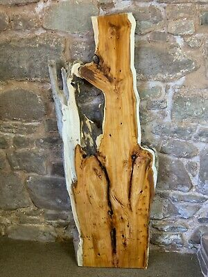 £130 • Buy Yew Board 709 .River / Resin/coffee Table Project Possibly . Lots Character .