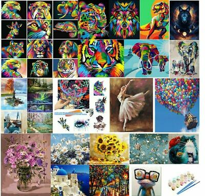 AU11.24 • Buy Paint By Numbers Kit From Australia DIY Paint On Canvas Frameless Flower Animal