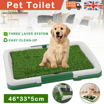 £11.49 • Buy Pet Dog Toilet Mat Indoor Restroom Training Grass Potty Pad Loo Tray Large Puppy